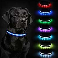 Dog Collar LED Lights